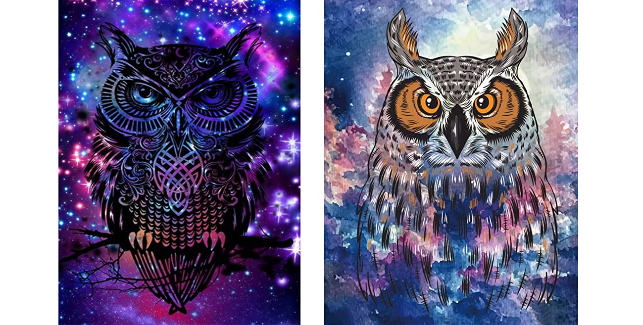 Avton 2-Pack 5D Diamond Painting Kits for Adults Full Drill Diamond Embroidery Bright & Dark Owl Suit(30x40cm,12x16in)