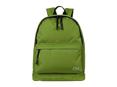 Lacoste Backpack (Melisse Noir) Backpack Bags