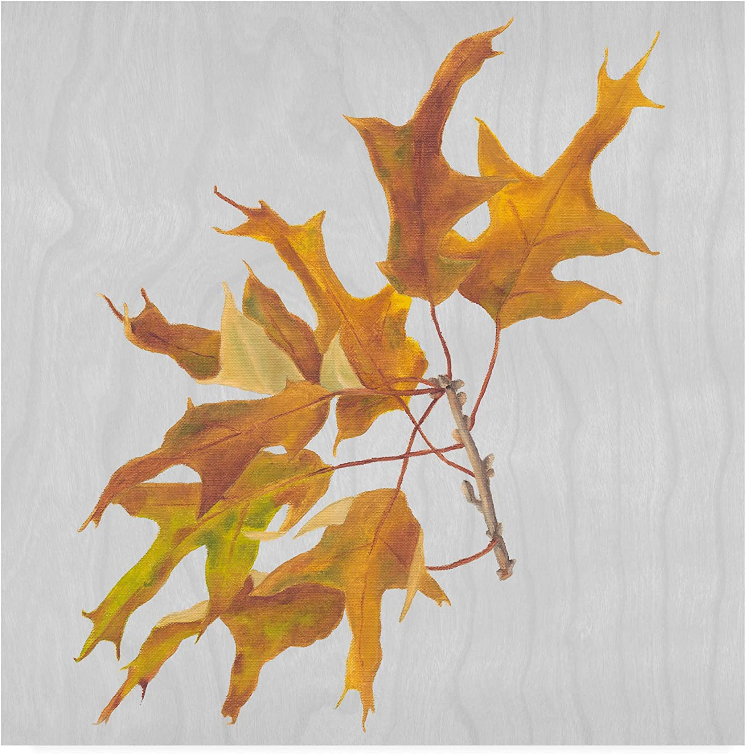Trademark Fine Art Autumn Leaves III by Dianne Miller, 14x14
