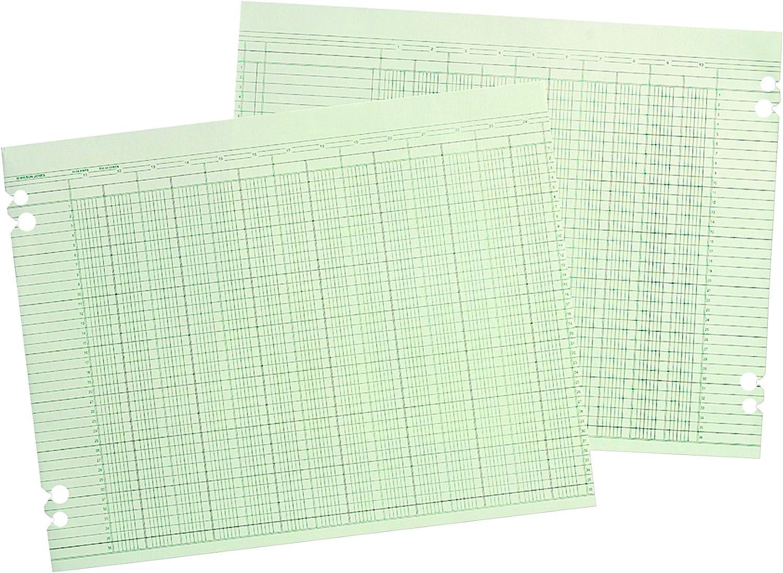 Wilson Jones G5030 Accounting Sheets, 30 Columns, 11 x 17, Green (Pack of 100 Loose Sheets)