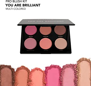 Best pro palette blush mac Reviews