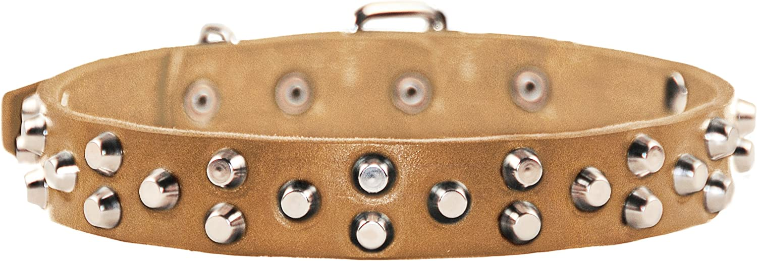 Dean and Tyler EGYPTIAN GEM , Dog Collar with Conical Pyramids and Nickel Hardware  Tan  Size 24Inch by 11 8Inch  Fits Neck 22Inch to 26Inch