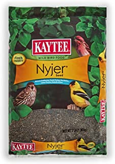 Best nyjer bird seed Reviews