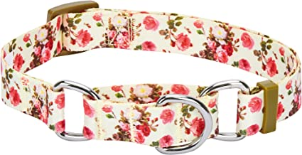 Best cute martingale collar Reviews