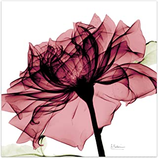 Empire Art Direct Chianti Rose I Flower Wall Art on Frameless Free Floating Tempered Glass Panel Ready to Hang,Living Room,Bedroom & Office, 24 in. x 0.2 in. x 24 in, Pink,White
