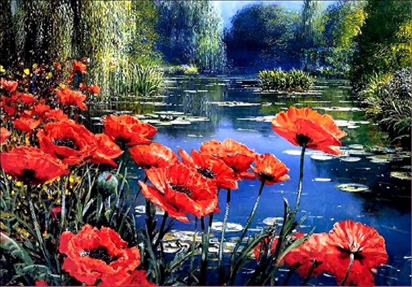 Dorara 5D DIY Diamond Painting, Cross Stitch DIY Diamond Painting,Red flower, poppy.12X16 Inches
