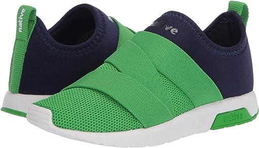 Regatta Blue/Grasshopper Green/Shell White