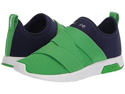 Native Kids Shoes Phoenix (Little Kid) (Regatta Blue/Grasshopper Green/Shell White) Boy