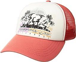 Retro Bear Hat