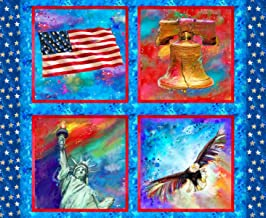 Fabric Editions American Icon Patriotic 36'' Panel Fabric, Multi
