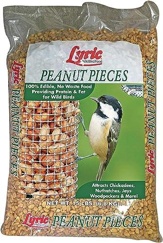 Wholesale Pack of 25 Pcs Pet Bird Vegetable Grass Rack Food Feeder