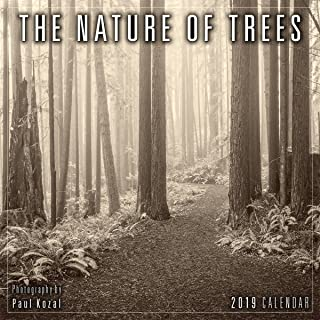 The Nature of Trees 2019 Mini Calendar