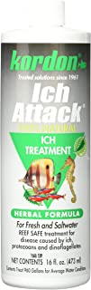 Best KORDON #39446 100% Natural and Herbal Formula Ich Attack-Ich Treatment for Aquarium, 16-Ounce Review
