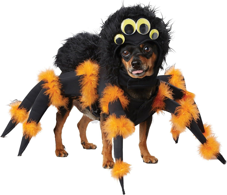 Halloween hondenpakje met spinnenpoten