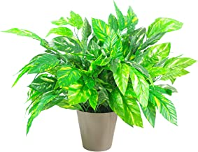 Blad 75cm Extra Grote Kunstzijde Gelakte Plant met Mokka Planter