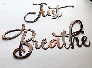 Just Breathe Metal Wall Art Accents Copper/Bronze