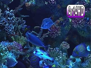 Aquarium Screensaver Art4HD Video Art Volume 1