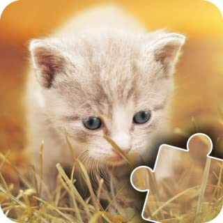 Kittens & Cats Jigsaw Puzzles for Kids - Cute, fun and Educational Cats & dogs Puzzle Game for Preschool Toddlers, Boys and Girls Ages 3-7 Years
