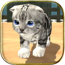 Best game cat game cat Reviews