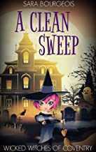 Best a clean sweep Reviews