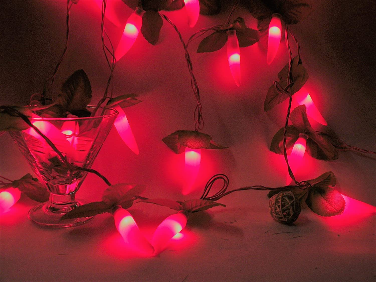 Glimmer Lightings San Jose Tulsa Mall Mall Red Mirchi Chillies String for Light 9 Meters