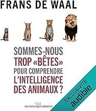 """Sommes-nous trop """"bêtes"""" pour comprendre l'intelligence des animaux ?"""