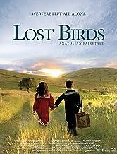 Lost Birds
