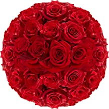 GlobalRose Red Roses- Fresh Flowers Express Delivery- 100 Stems