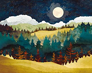 Mountain Paint by Numbers for Adults Abstract Nature Landscape Oil Painting Moon DIY Adults Paint by Number Nature Scenery...