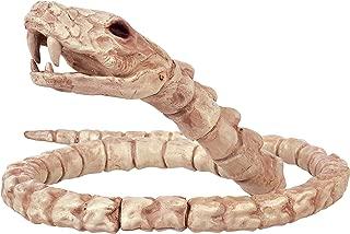 Best real snake bones Reviews