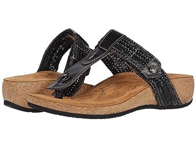 Taos Footwear Pam (Black) Women