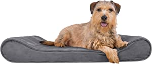 Furhaven Pet Plush Orthopedic Sofa