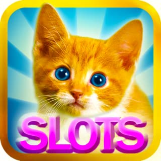 Slots Kitty and Cat - Free Slot Machines