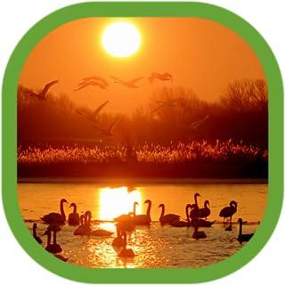Nature Wallpapers Desktop Free Download