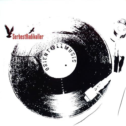 andrew bird allmusic discography