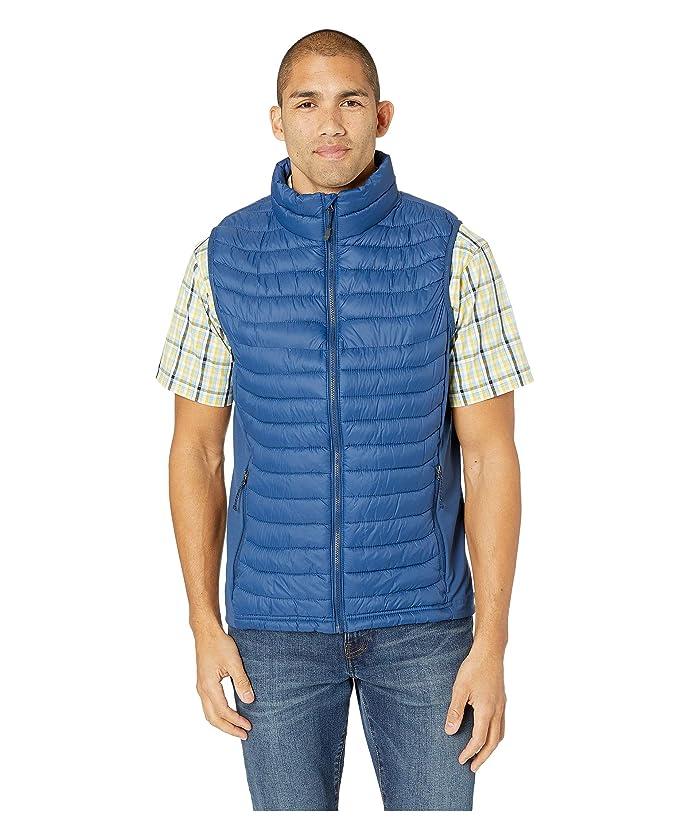 Columbia Powder Passtm Vest (Carbon) Men