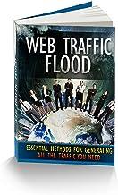 WEB TRAFFIC FLOOD (English Edition)
