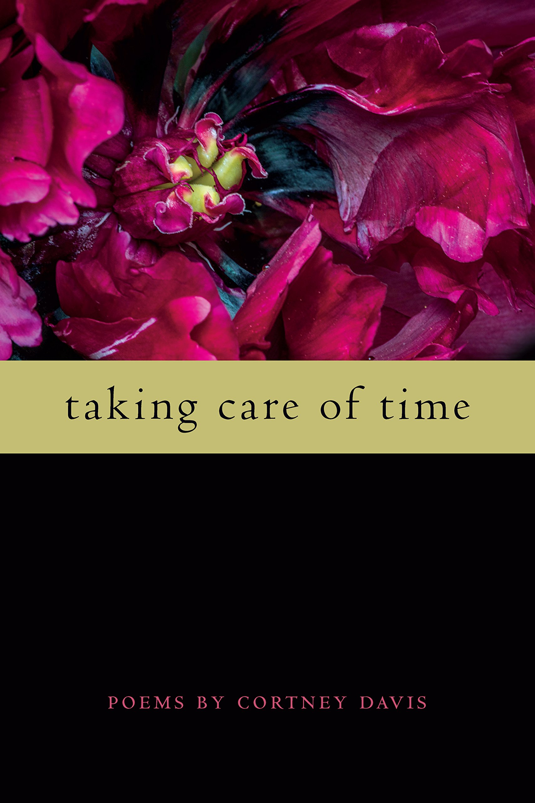 Taking Care of Time (Wheelbarrow Books) (English Edition)