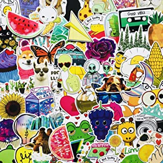 HOLDAX Premium Quality Summer Stickers |100 Pcs | Super cute Vsco Fresh Girl Sticker For Water Bottle Hydro Flask Book Tab...