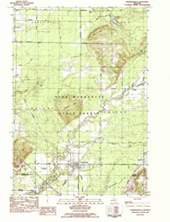 YellowMaps Thompsonville MI topo map, 1:25000 Scale, 7.5 X 7.5 Minute, Historical, 1983, Updated 1984, 26.8 x 21.8 in