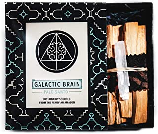 Galactic Brain Palo Santo Sticks (100g Gift Box w/Selenite) | High Resin Palo Santo Wood from Peru for Cleansing, Meditation, Relaxation or Ritual