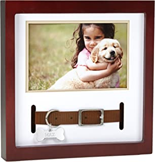 Best dog collar frame Reviews