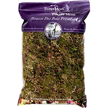 CalCastle Craft Natural Dried Moss 9 oz Bag