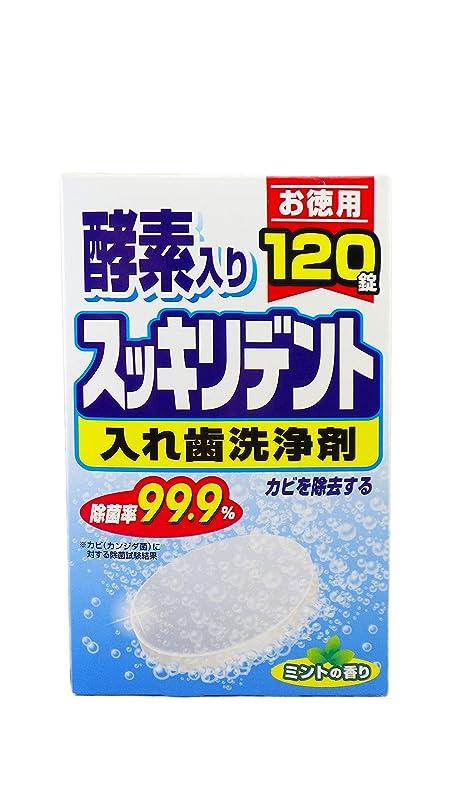 タイピスト粘性の視力スッキリデント 入れ歯洗浄剤 総入れ歯用 酵素入り ミントの香り 120錠入