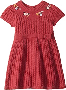 Short Sleeve Embroidered Sweater Dress (Toddler/Little Kids/Big Kids)