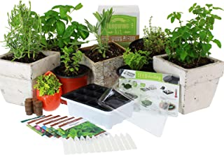 Culinary Indoor Herb Garden Starter Kit   Basic Herb Seeds   6 Non-GMO Varieties   Grow Cooking Herbs & Spices   Seeds: Ba...