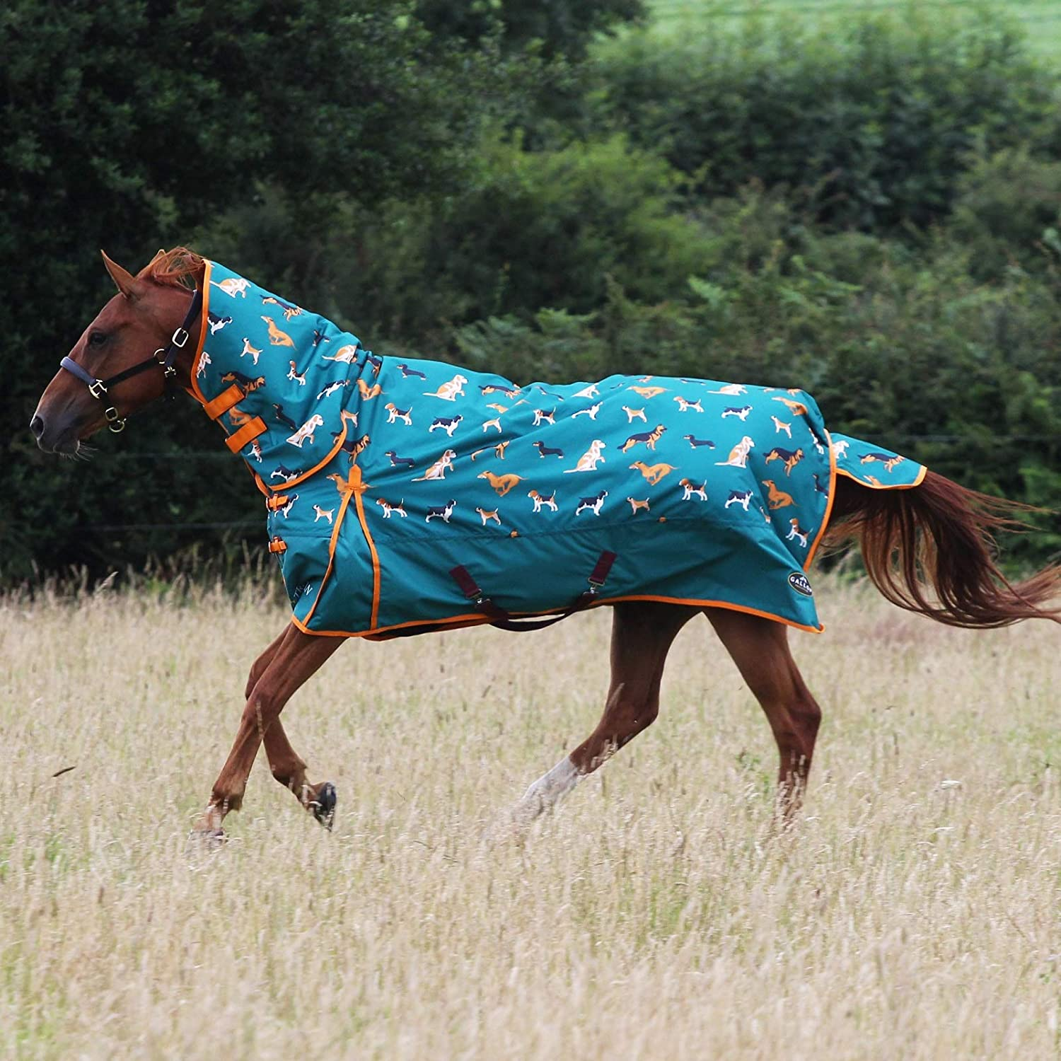 Gallop Trojan 200g Horse Turnout Rug Neck Full Dealing full price reduction Combo Mediumweigh Free shipping / New