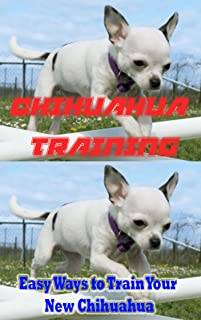 Chihuahua Training, Easy Ways to Train Your New Chihuahua: Training, Breed History, Appearance, Unique Health Problems, and Social Temperament (English Edition)