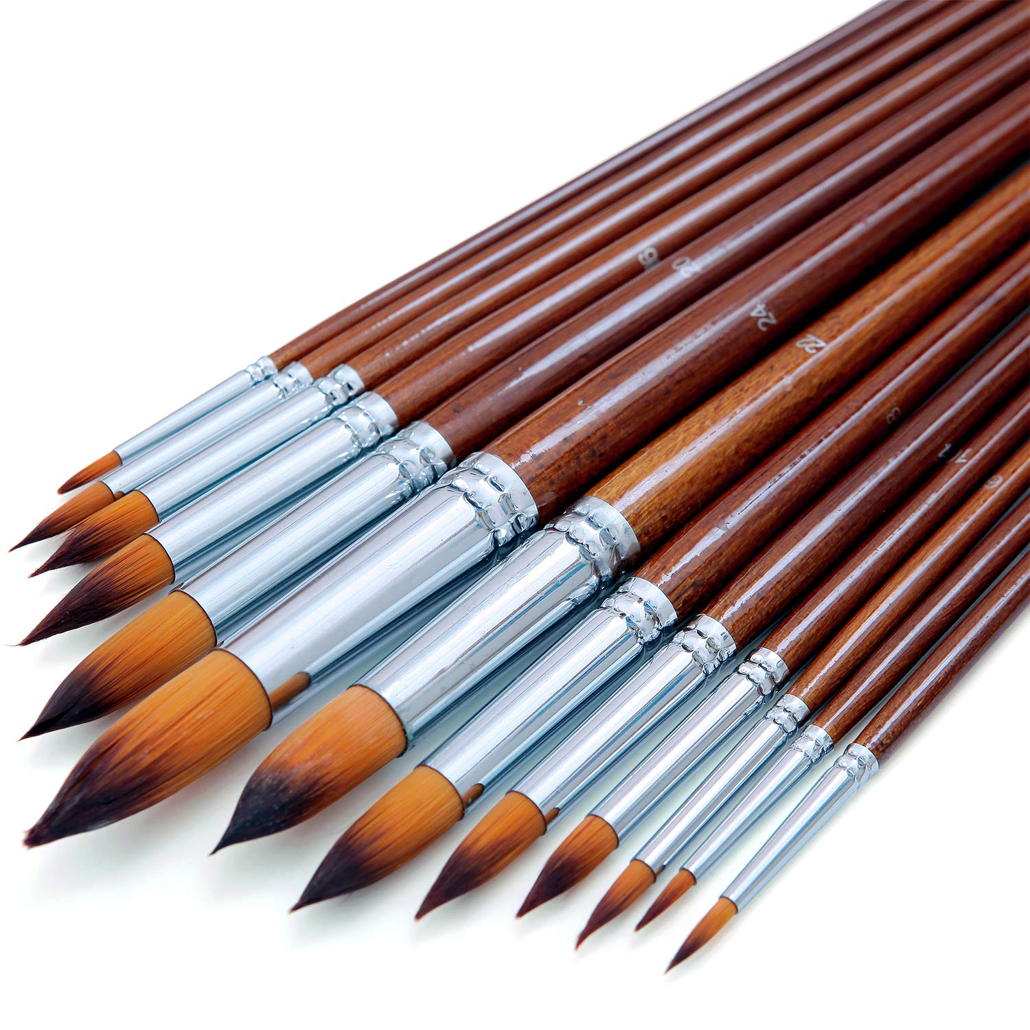 Artist Watercolor Paint Brushes 13pcs
