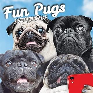 Fun Pugs 2020 Pug Wall Calendar